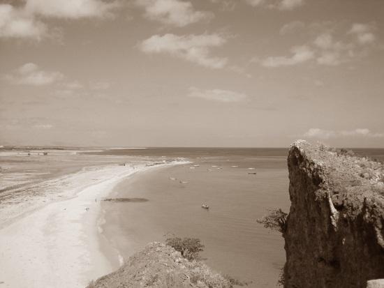 Reise auf Socotra